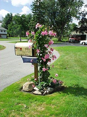Diy Letter Boxes For Your Home 8 - 40+ DIY Letter Boxes For Your Home