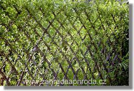 Diy Living Fence Art 10 - Heart-Stopping DIY Living Fence Art Ideas