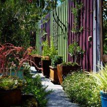 Diy Living Fence Art 20 214x214 - Heart-Stopping DIY Living Fence Art Ideas