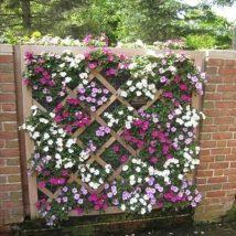 Diy Living Fence Art 22 214x214 - Heart-Stopping DIY Living Fence Art Ideas