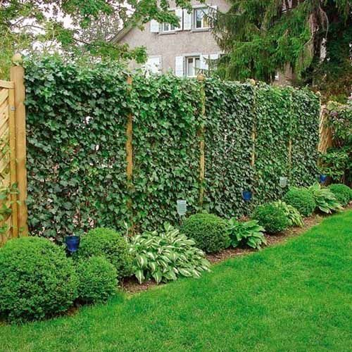 Diy Living Fence Art 27 - Heart-Stopping DIY Living Fence Art Ideas