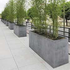 Diy Living Fence Art 30 - Heart-Stopping DIY Living Fence Art Ideas