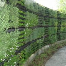 Diy Living Fence Art 37 214x214 - Heart-Stopping DIY Living Fence Art Ideas