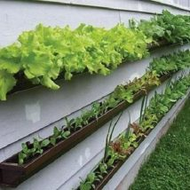 Diy Raised Planters 37 214x214 - Best DIY Raised Planters Ideas you can find
