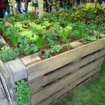 Diy Raised Planters 42 214x214 - Best DIY Raised Planters Ideas you can find