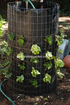 Diy Raised Planters 47 - Best DIY Raised Planters Ideas You Can Find