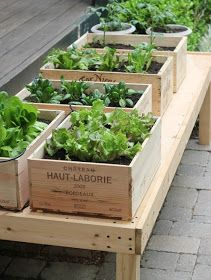 Diy Raised Planters 52 - Best DIY Raised Planters Ideas You Can Find