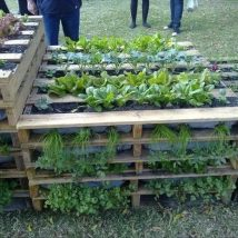 Diy Raised Planters 7 214x214 - Best DIY Raised Planters Ideas you can find