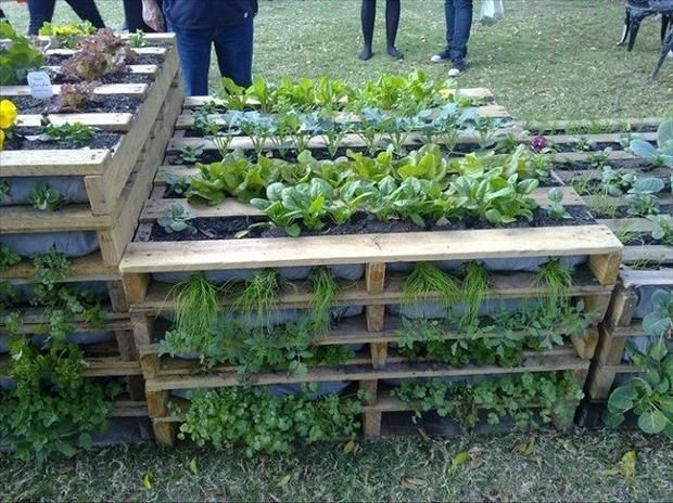 Diy Raised Planters 7 - Best DIY Raised Planters Ideas You Can Find