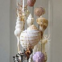 Diy Sea Shell Projects 1 214x214 - 35+ Awesome Ideas to be Done With Seashells