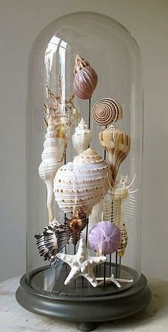 Diy Sea Shell Projects 1 - 35+ Awesome Ideas To Be Done With Seashells