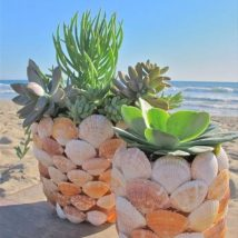 Diy Sea Shell Projects 22 214x214 - 35+ Awesome Ideas to be Done With Seashells