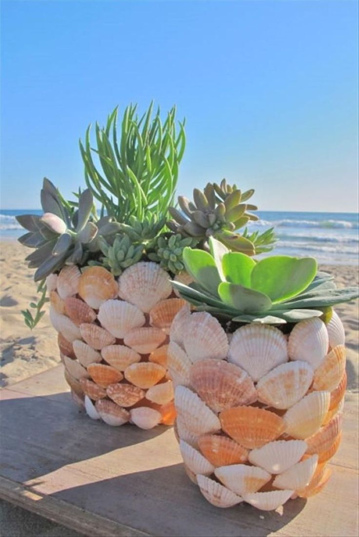 Diy Sea Shell Projects 22 - 35+ Awesome Ideas To Be Done With Seashells
