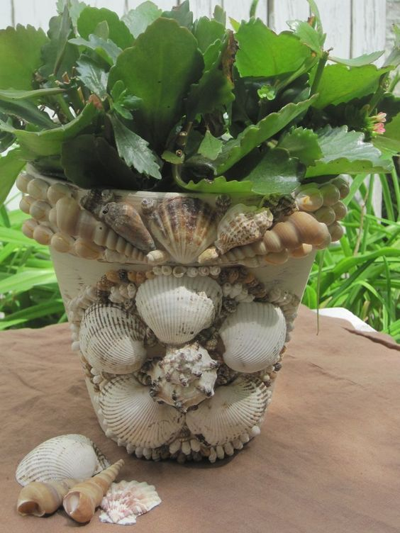 Diy Sea Shell Projects 23 - 35+ Awesome Ideas To Be Done With Seashells