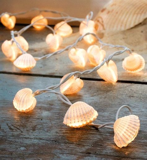 Diy Sea Shell Projects 26 - 35+ Awesome Ideas To Be Done With Seashells