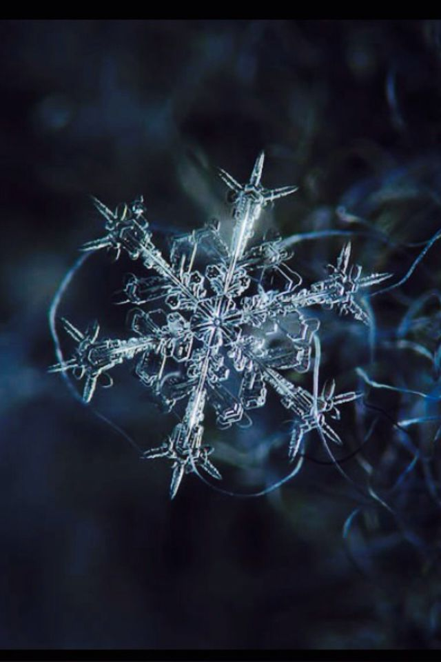 Diy Snowflakes 49 - Coolest DIY Snowflakes You Can Make Easily