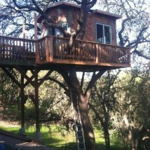 Diy Tree Houses 10 214x214 - 45+ DIY Tree House Ideas For Your Inspiration