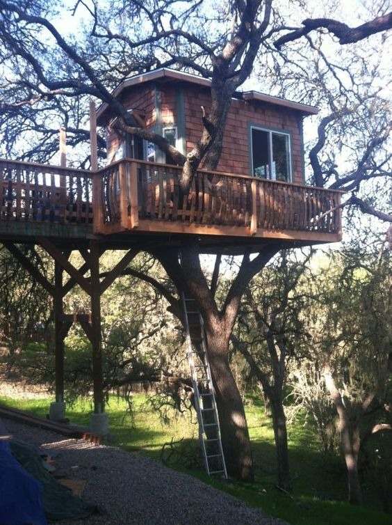 Diy Tree Houses 10 - 45+ DIY Tree House Ideas For Your Inspiration