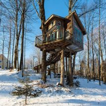 Diy Tree Houses 13 214x214 - 45+ DIY Tree House Ideas For Your Inspiration