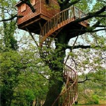 Diy Tree Houses 15 214x214 - 45+ DIY Tree House Ideas For Your Inspiration