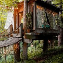 Diy Tree Houses 16 214x214 - 45+ DIY Tree House Ideas For Your Inspiration