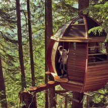 Diy Tree Houses 18 214x214 - 45+ DIY Tree House Ideas For Your Inspiration