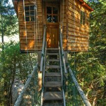Diy Tree Houses 19 214x214 - 45+ DIY Tree House Ideas For Your Inspiration