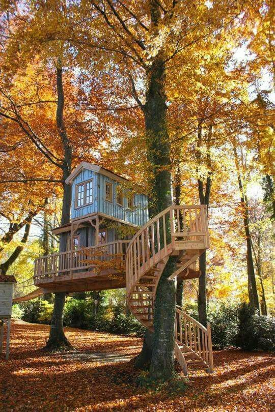 Diy Tree Houses 2 - 45+ DIY Tree House Ideas For Your Inspiration