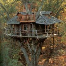 Diy Tree Houses 22 214x214 - 45+ DIY Tree House Ideas For Your Inspiration