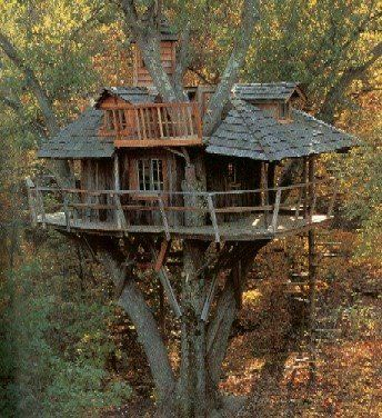 Diy Tree Houses 22 - 45+ DIY Tree House Ideas For Your Inspiration