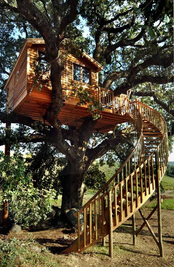 Diy Tree Houses 27 - 45+ DIY Tree House Ideas For Your Inspiration