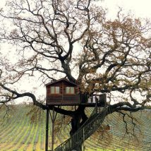 Diy Tree Houses 28 214x214 - 45+ DIY Tree House Ideas For Your Inspiration
