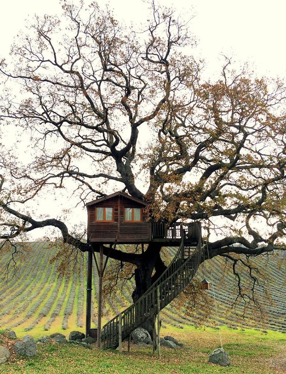 Diy Tree Houses 28 - 45+ DIY Tree House Ideas For Your Inspiration