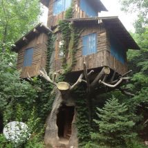 Diy Tree Houses 29 214x214 - 45+ DIY Tree House Ideas For Your Inspiration