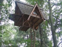Diy Tree Houses 33 - 45+ DIY Tree House Ideas For Your Inspiration