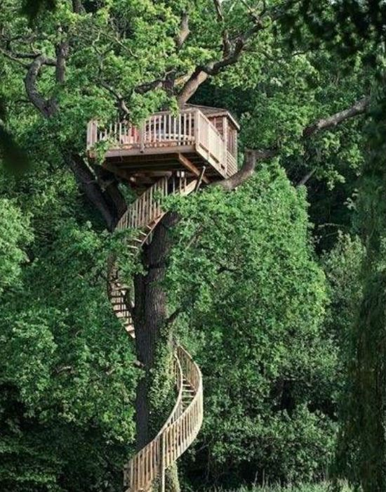 Diy Tree Houses 35 - 45+ DIY Tree House Ideas For Your Inspiration