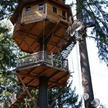 Diy Tree Houses 36 214x214 - 45+ DIY Tree House Ideas For Your Inspiration