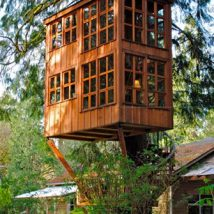 Diy Tree Houses 38 214x214 - 45+ DIY Tree House Ideas For Your Inspiration