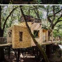 Diy Tree Houses 39 214x214 - 45+ DIY Tree House Ideas For Your Inspiration