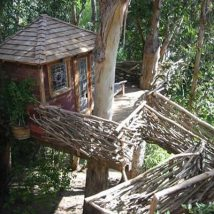 Diy Tree Houses 44 214x214 - 45+ DIY Tree House Ideas For Your Inspiration