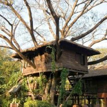 Diy Tree Houses 48 214x214 - 45+ DIY Tree House Ideas For Your Inspiration