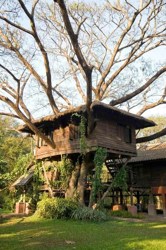 Diy Tree Houses 48 - 45+ DIY Tree House Ideas For Your Inspiration