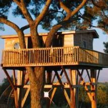 Diy Tree Houses 49 214x214 - 45+ DIY Tree House Ideas For Your Inspiration