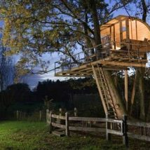 Diy Tree Houses 50 214x214 - 45+ DIY Tree House Ideas For Your Inspiration
