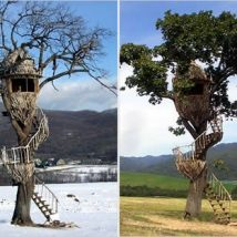 Diy Tree Houses 51 214x214 - 45+ DIY Tree House Ideas For Your Inspiration