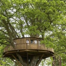 Diy Tree Houses 53 214x214 - 45+ DIY Tree House Ideas For Your Inspiration