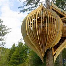 Diy Tree Houses 54 214x214 - 45+ DIY Tree House Ideas For Your Inspiration
