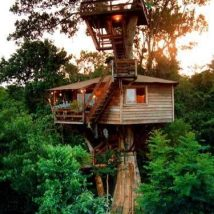 Diy Tree Houses 56 214x214 - 45+ DIY Tree House Ideas For Your Inspiration