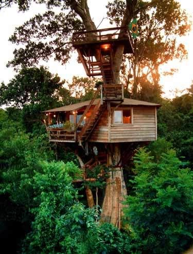 Diy Tree Houses 56 - 45+ DIY Tree House Ideas For Your Inspiration