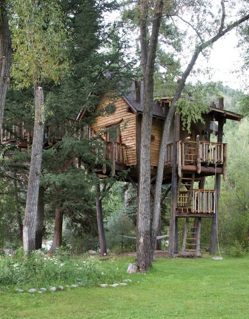 Diy Tree Houses 8 - 45+ DIY Tree House Ideas For Your Inspiration